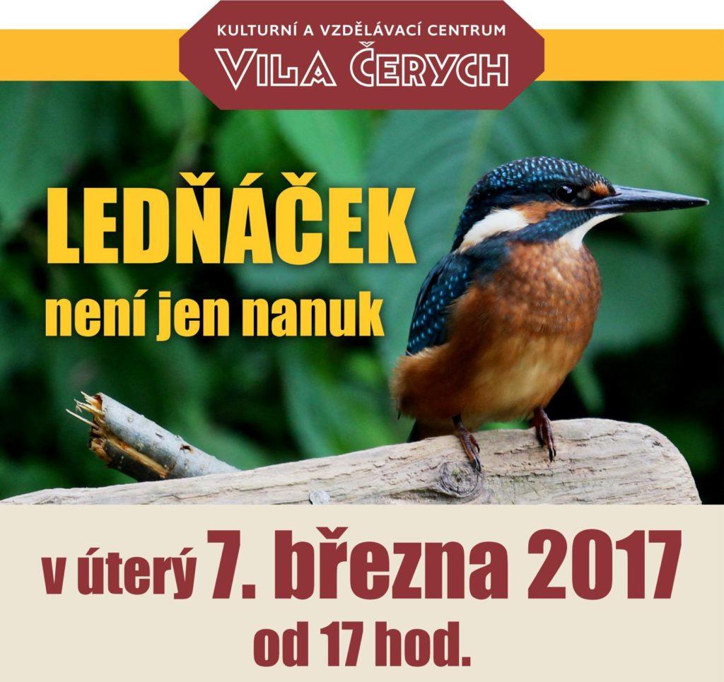 1703_Ledňáček